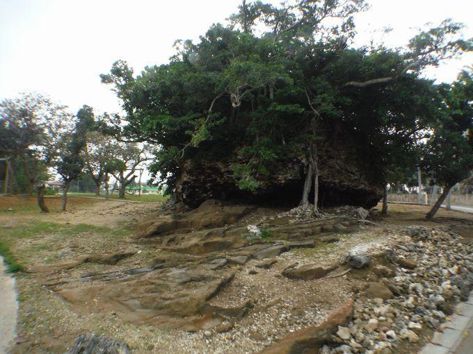 近くには巨大な津波岩。崎原公園