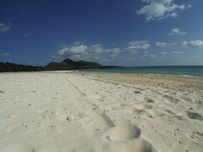 乗馬体験を行なうフナクヤ浜は白すぎる砂浜が広がるビーチです。