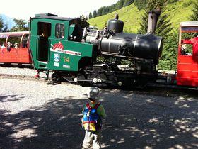 スイスアルプス!蒸気機関車で登る、ほのぼのロートホルン