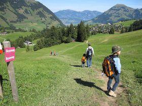 ハイジの世界へハイキング!スイス中部「ヴィアツヴェーリ」