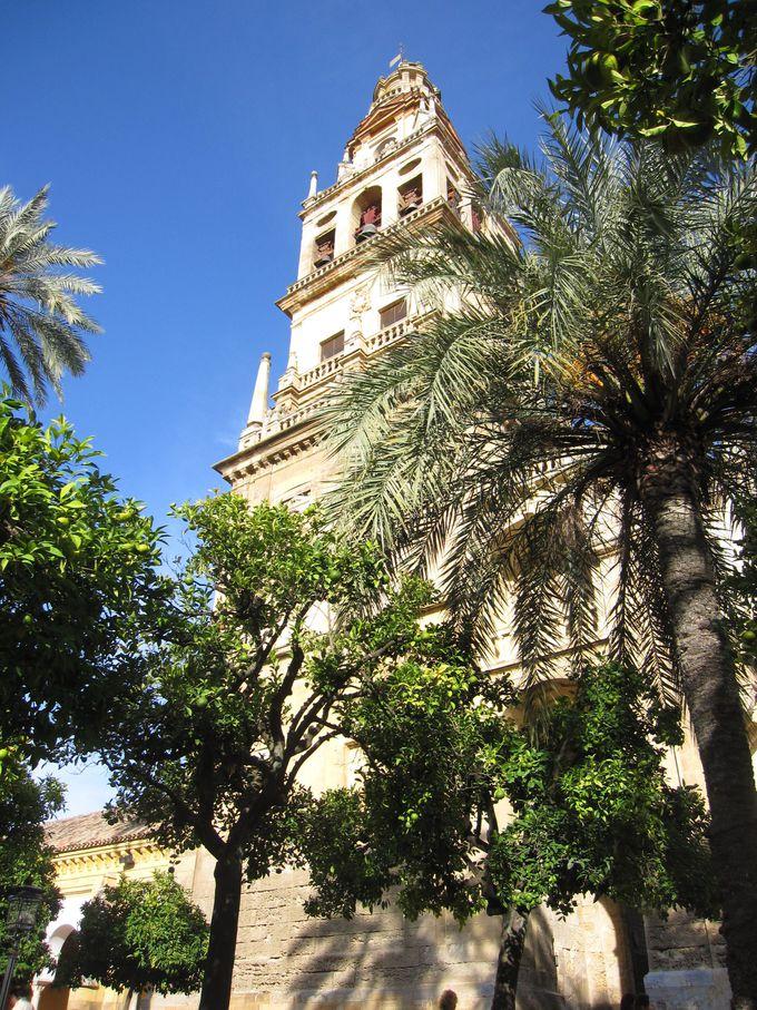 メスキータのオレンジの木の中庭と鐘楼