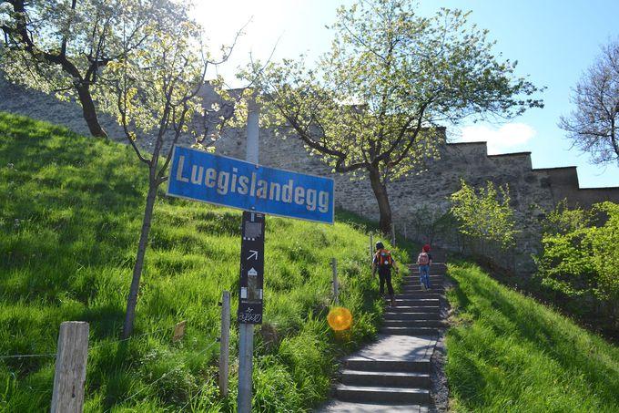 午前の観光  〜ムゼック城壁と塔を巡る