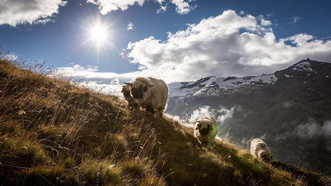 午前の観光 〜ローテンボーデンからハイキング