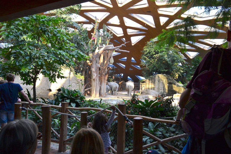 のびのびとゾウが暮らす「ケーン・クラチャン・エレファントパーク」