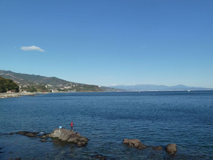 相模湾の絶景を一望するなら琴ヶ浜海岸へ!