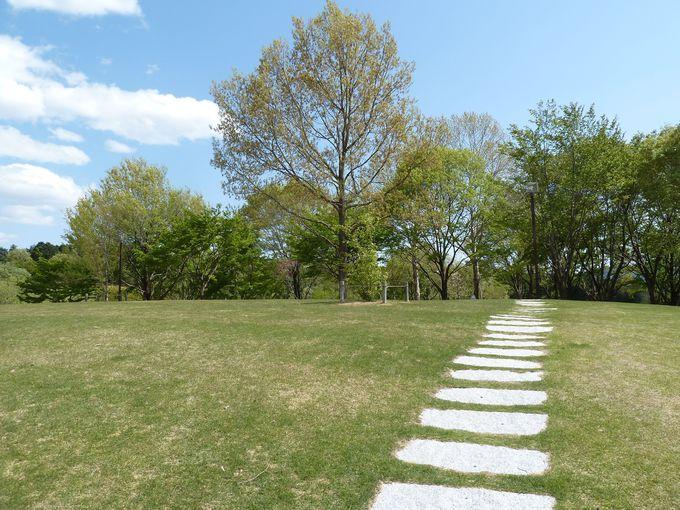 最後は新緑と陶芸の魅力を感じに笠間芸術の森公園へ