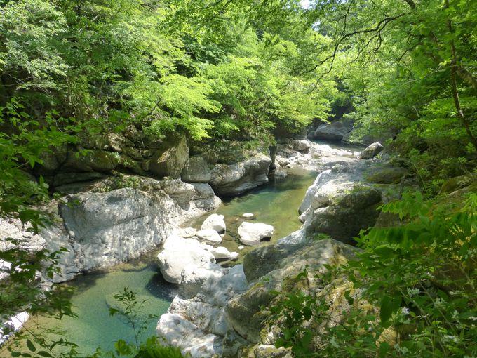 緑溢れる渓谷にかかる留春の吊橋!