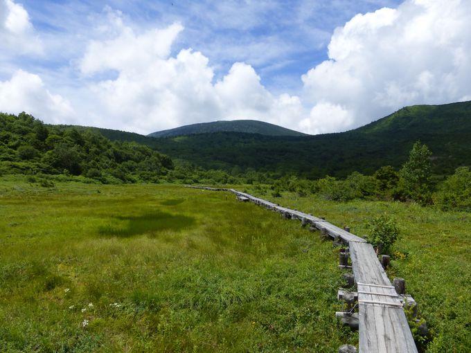 標高1600mの浄土平湿原で気軽に高原散策!