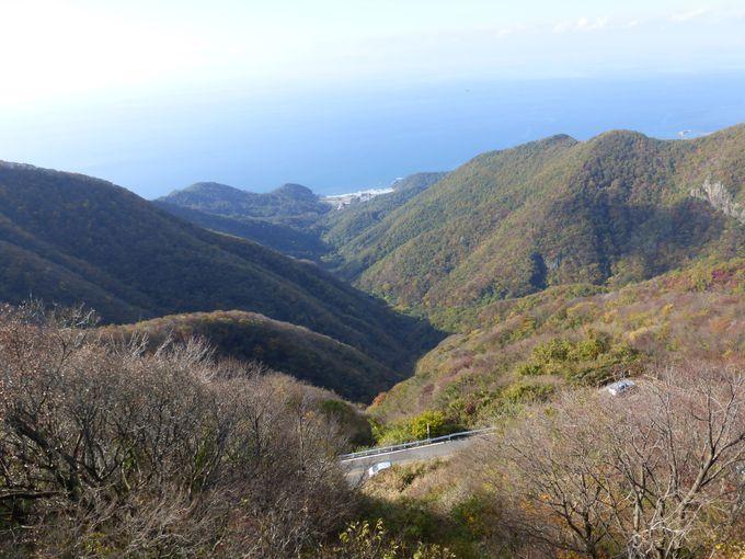 弥彦山の山頂から眺める日本海の景色