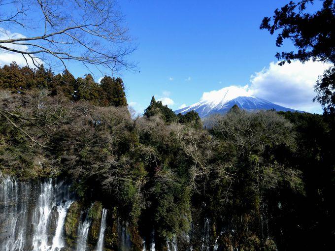 白糸の滝×富士山を望むとっておきのビュースポット!