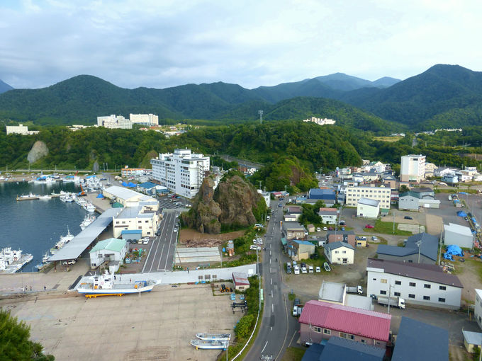 「オロンコ岩展望台」から見下ろす「ゴジラ岩」の眺め