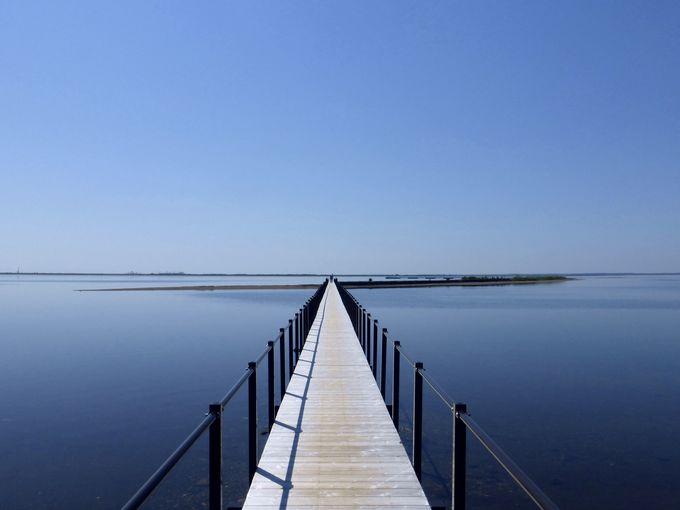 お待ちかね!これがトドワラから見る「野付湾」の絶景!