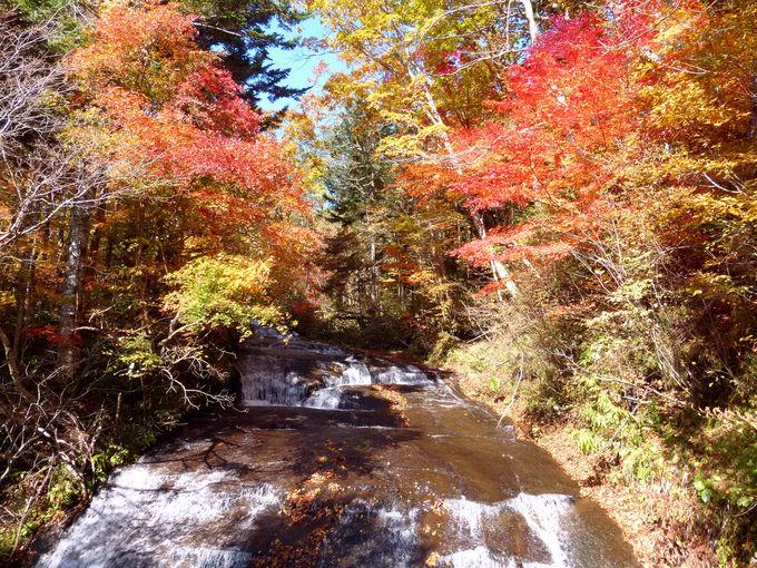 恵庭渓谷と言えばやっぱり滝!ラルマナイの滝の紅葉