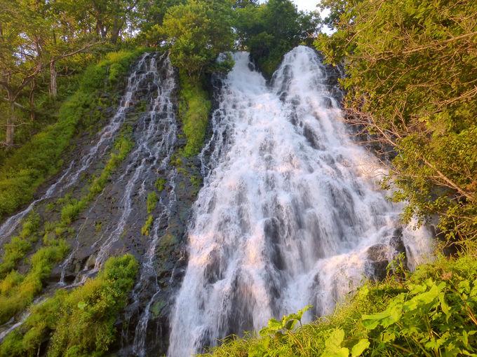 お待ちかね!こちらが黄金色に輝くオシンコシンの滝!