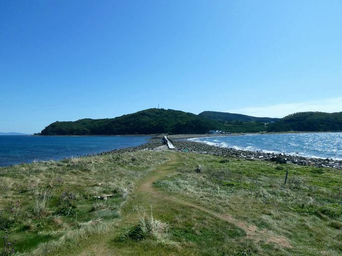 橋を使って島へと渡れる!?夏泊半島の先端にある「大島」