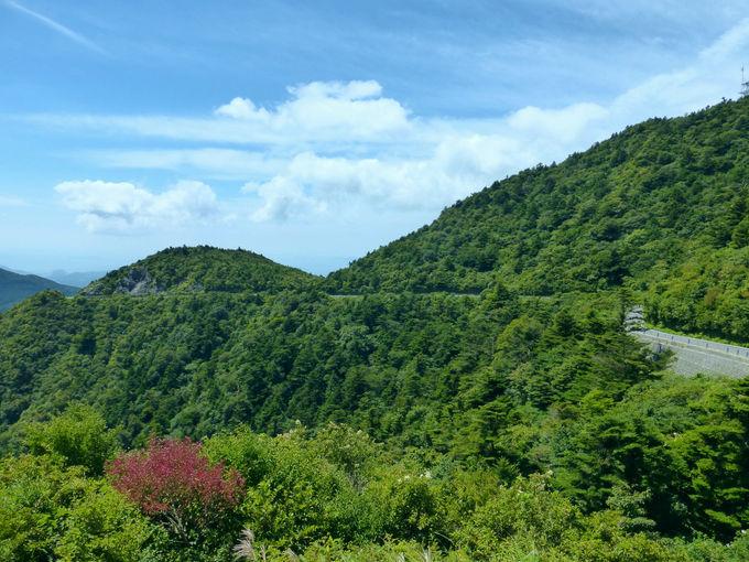 圧倒的な迫力で望む平成新山!仁田峠第二展望所