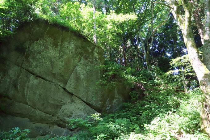 ハイキングコースに残された「護摩堂城」の史跡の数々