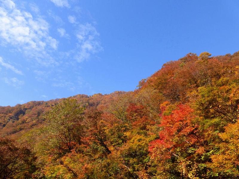 """これが日本の""""赤壁""""だ!山形・赤芝峡で紅葉散策を楽しもう"""