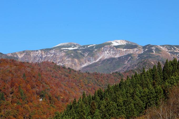 市ノ瀬ビジターセンター周辺で紅葉を楽しむ!白山展望台