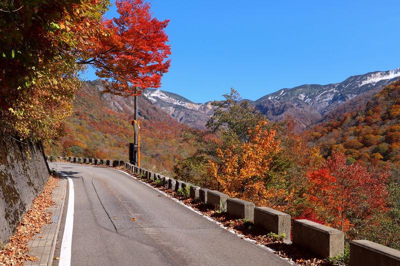 登山口で絶景紅葉狩り!石川・県道白山公園線沿いの紅葉スポット3選