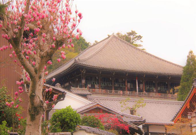 奈良・東大寺「二月堂」へは裏参道からのアクセスがおすすめ