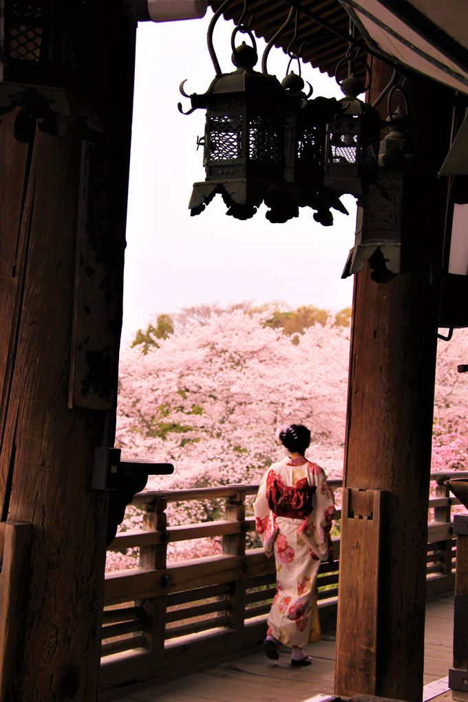 桜の季節にも訪れたい!古都・奈良の幻想的な風景「二月堂」