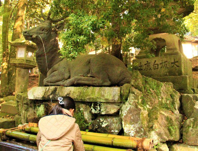 奈良・春日大社「夫婦大国社」への行き方・アクセス・場所