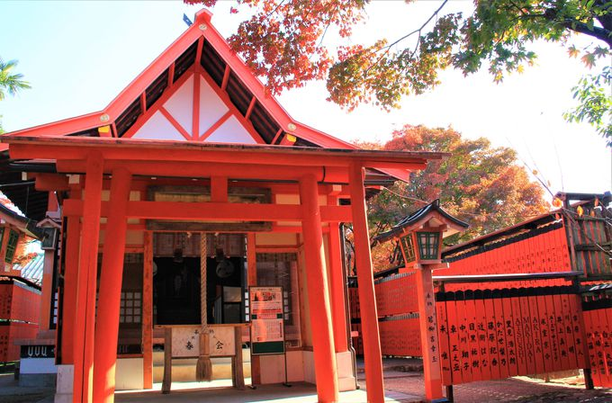 ジャニーズ、AKB48、嵐、関ジャニ∞、7WESTも!京都の最強パワースポット「芸能神社」
