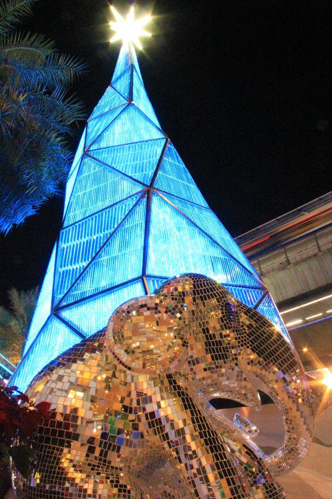 カップルや女子旅におすすめ!サイアム・パラゴンのクリスマス
