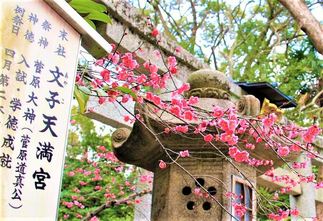 北野天満宮の「梅花祭り」もおすすめ