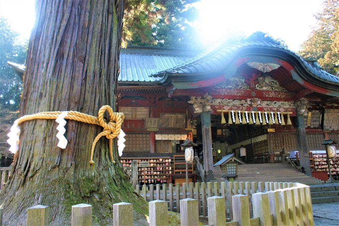 「冨士浅間神社」は婚活女子に大人気!