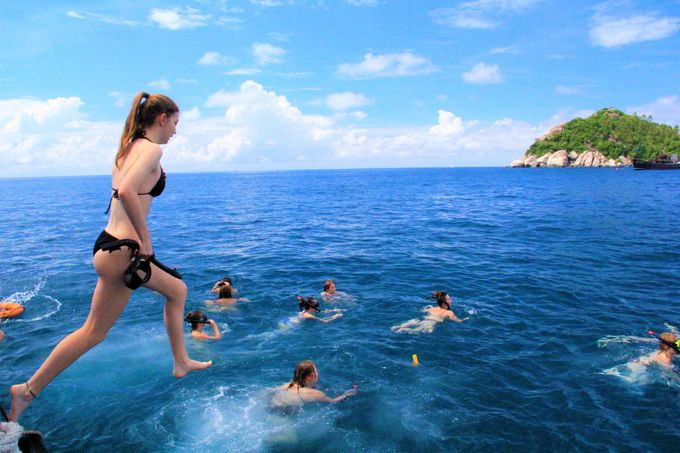 安い!楽しい!タオ島&ナンユアン島で1日シュノーケリングツアー