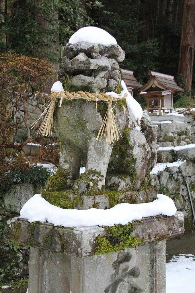 高天彦神社の狛犬