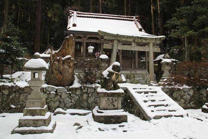 『天孫降臨』の地に建つ高天彦神社