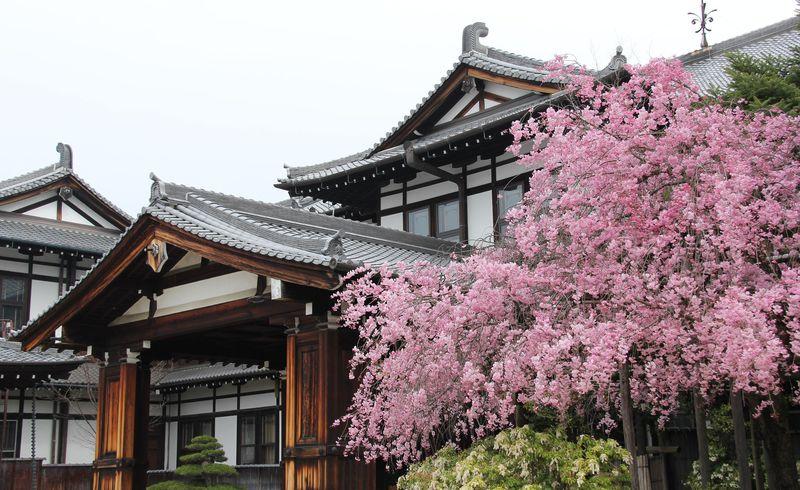 世界遺産観光にも便利で快適!奈良市のおすすめホテル8選