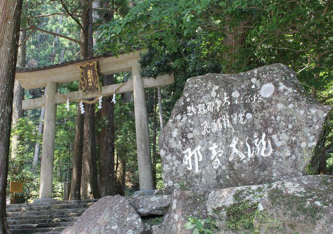 原生林が生い茂る熊野 古くから神々が住む聖地と崇められてきた