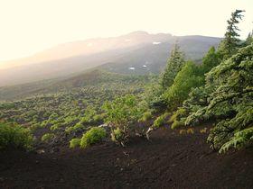 生と死のあいだ‥富士山五合目は天女が舞い降り、帰ってゆく場所