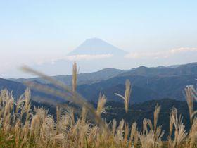 伊豆高原でのデートは眺めのいい大室山でキマリ!!
