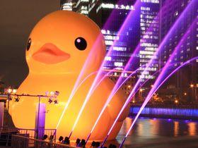 ラバー・ダックも大喜び!『大阪・光の饗宴』のポイントはココ!聖なる夜は大阪で過ごそう