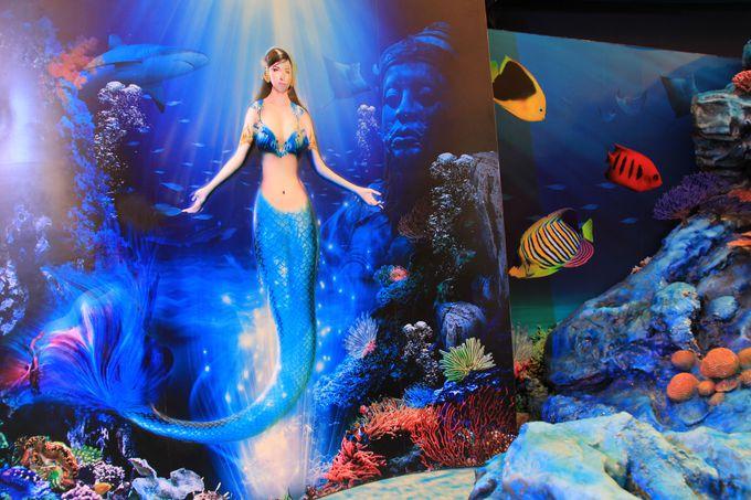 デパ地下に巨大水族館!?海をテーマにファンタスティックな世界