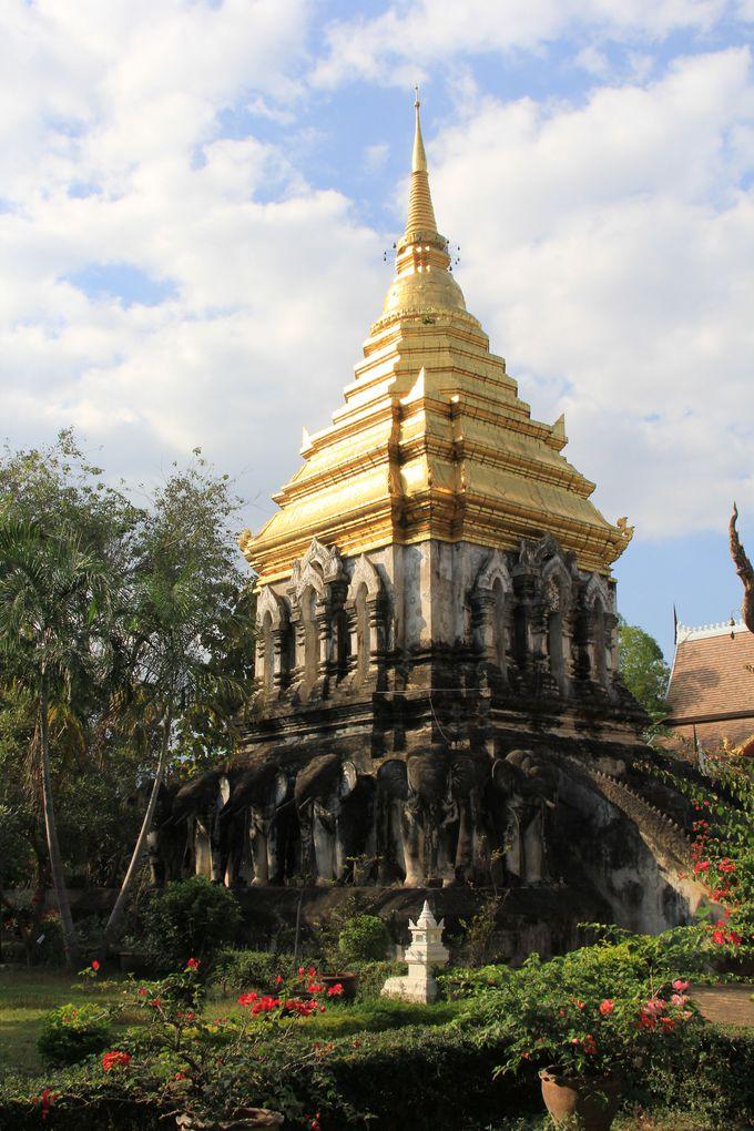 ダイナミックな黄金の仏塔。15頭のゾウがよいしょ!