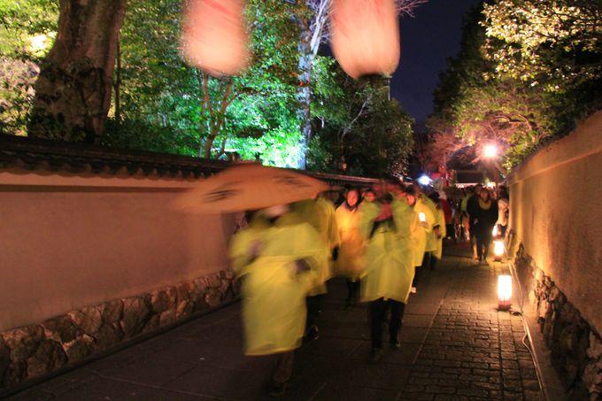 3月の京都。「もののけ姫」が来る!