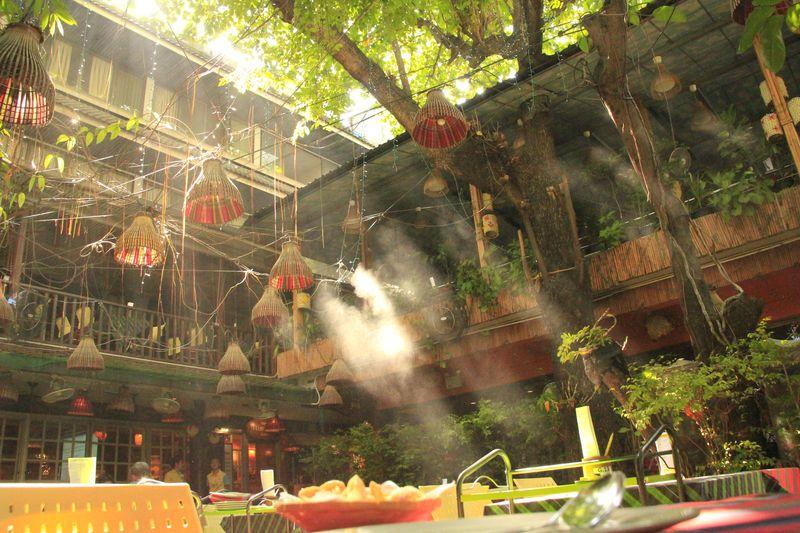 衝撃!?バンコクのコンドームレストランは森の輝きが美しい
