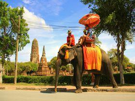象の背で王様気分!世界遺産アユタヤ「エレファント・ライド」