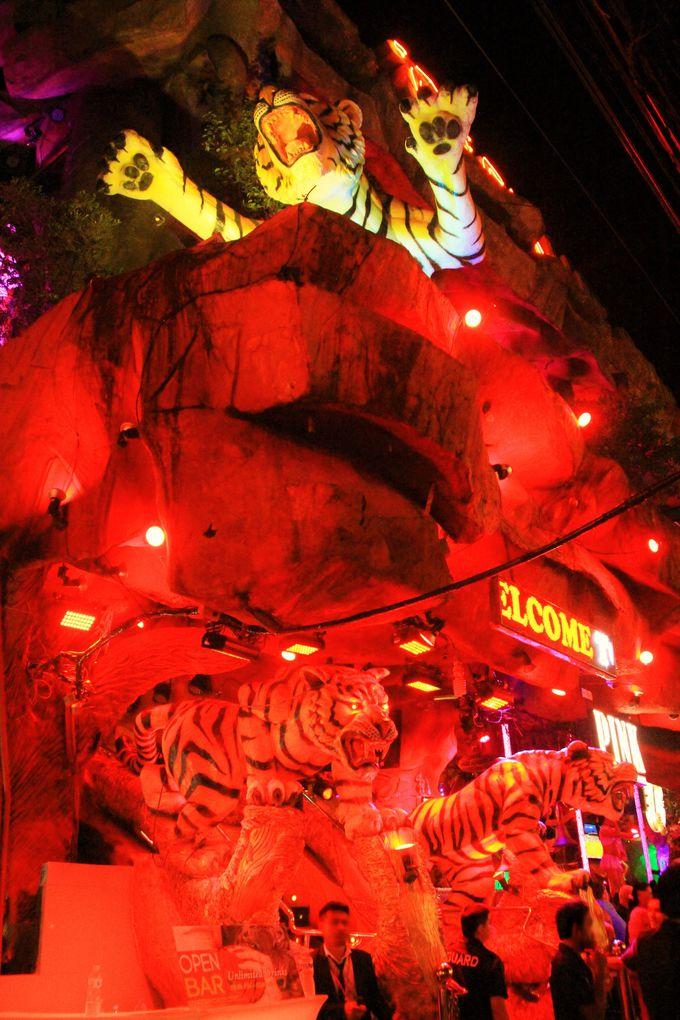 ド派手!夜遊びの虎たちが集う「Tiger」