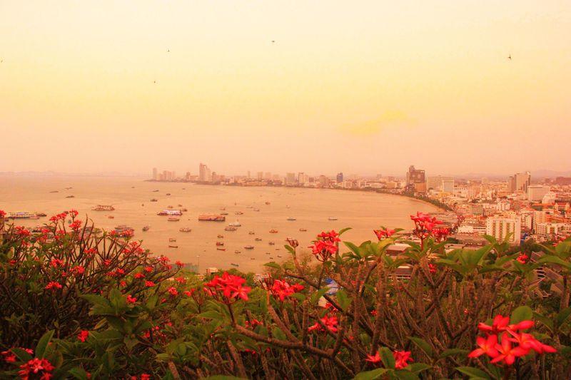 海が見える絶景バー!穴場ビーチ&展望台!パタヤの夕陽3選