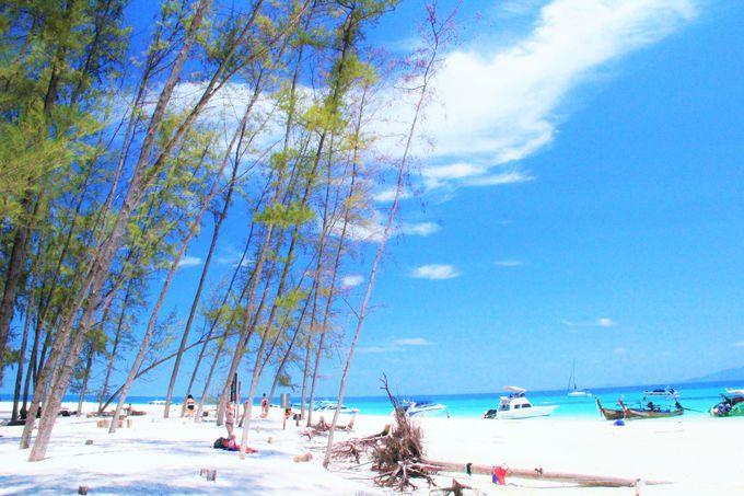 奇跡の美しさ!「バンブー島」に上陸しよう