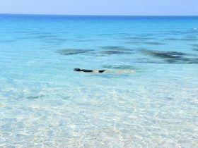 鳥になった気分!空とバンコクに一番近い透明な海「シーチャン島」