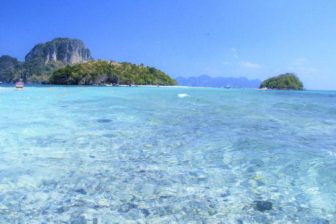 透明すぎる海で、魂を再生!