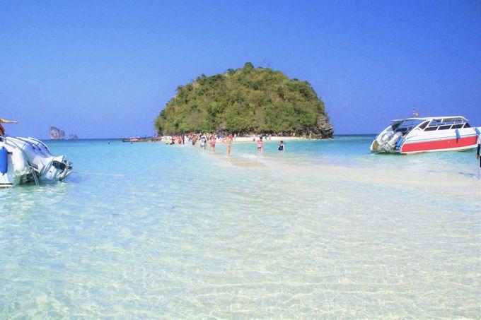 絶景の海!可愛い巨大マリモ「タップ島」